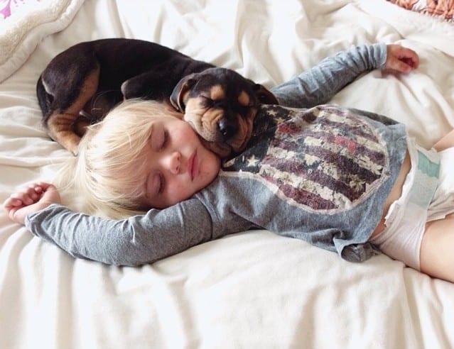 Amitié entre un bébé et un chiot – 1
