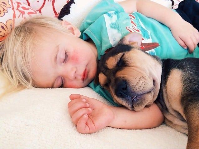 Amitié entre un bébé et un chiot – 10