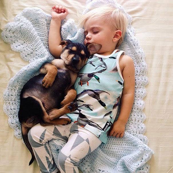 Amitié entre un bébé et un chiot - 14