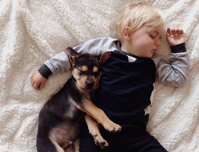 Amitié entre un bébé et un chiot – 22