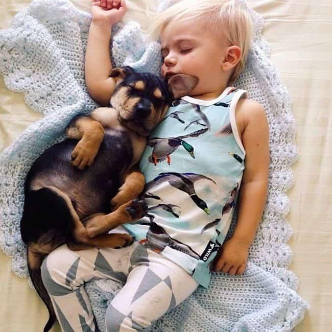Amitié entre un bébé et un chiot – 25