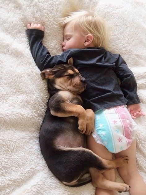 Amitié entre un bébé et un chiot – 5