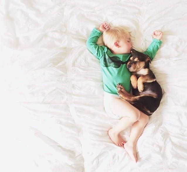 Amitié entre un bébé et un chiot – 7