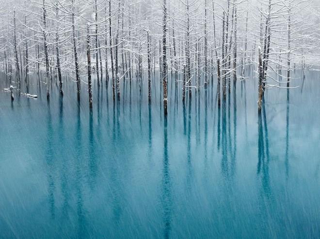 Photo parfaite de Kent Shiraishi - 6