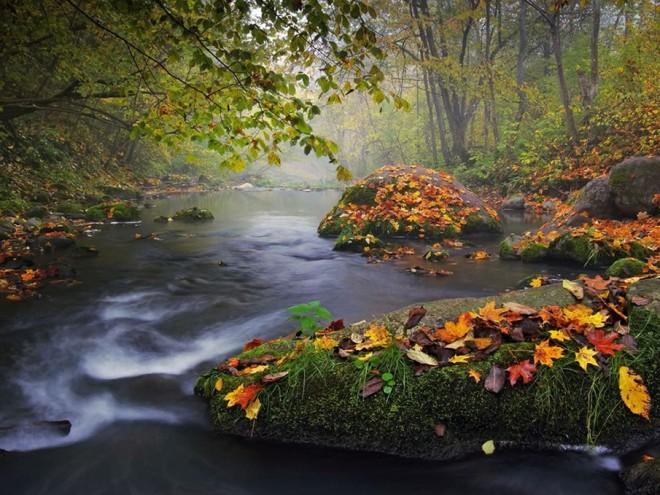 Photo parfaite d'Olegas Kurasovas – 21